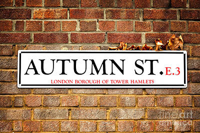 Autumn Street And Autumn Leaves Poster by Jane Rix