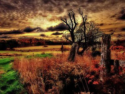 Autumn Sunlight Poster by Bob Orsillo