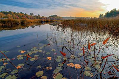 Autumn Sunrise At Compass Pond Poster