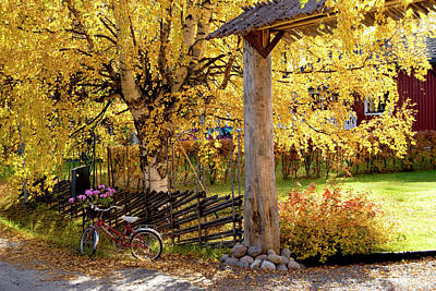 Rural Rustic Autumn Poster