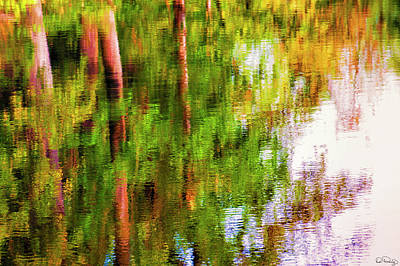 Poster featuring the photograph Autumn Trees Reflect In A Creek by Dee Browning