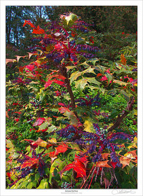 Autumn Up-close Poster