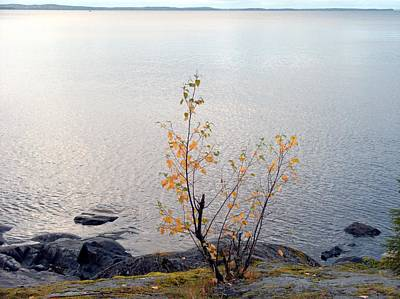 Poster featuring the photograph Autumn View 3 by Sami Tiainen