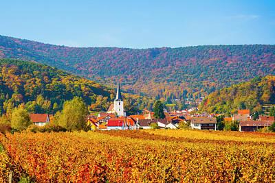 Autumn Vineyard Palatinate  Pfaizerwald Region Germany Poster