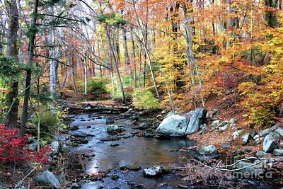 Autumn Woodlands Poster