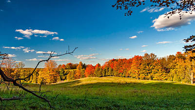 Autumn Woodlots Poster by Steve Harrington