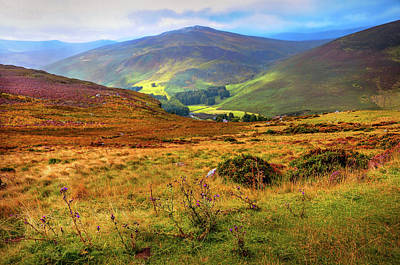 Poster featuring the photograph Autumnal Hills. Wicklow. Ireland by Jenny Rainbow