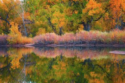 Autumn's Color Palette  Poster