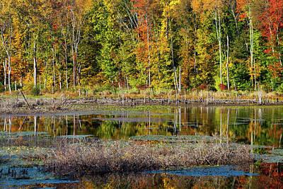 Autumns Quiet Moment Poster