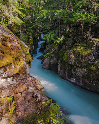 Poster featuring the photograph Avalanche Gorge 5 by Gary Lengyel