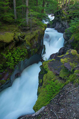 Poster featuring the photograph Avalanche Gorge 6 by Gary Lengyel