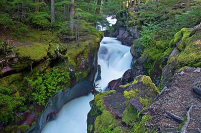 Poster featuring the photograph Avalanche Gorge 7 by Gary Lengyel