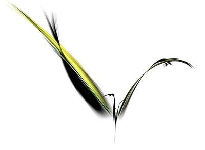 Avian Zen - Fractal Art Poster