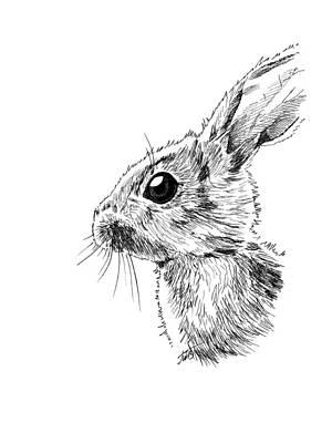 Baby Hare Poster by Masha Batkova