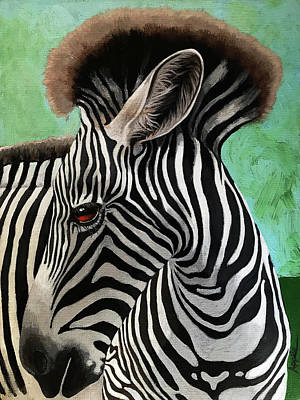Poster featuring the painting Baby Zebra by Linda Apple