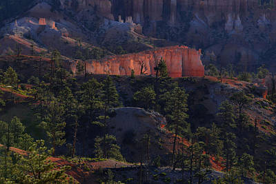 Poster featuring the photograph Backlit Hoodoos At Sunrise by Stephen  Vecchiotti