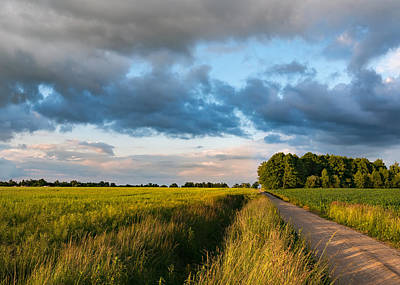 Poster featuring the photograph Backroad Between The Fields by Dmytro Korol