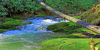 Backwoods Stream Poster