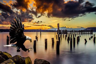 Bald Eagle Landing At Beach As Sun Sets Poster