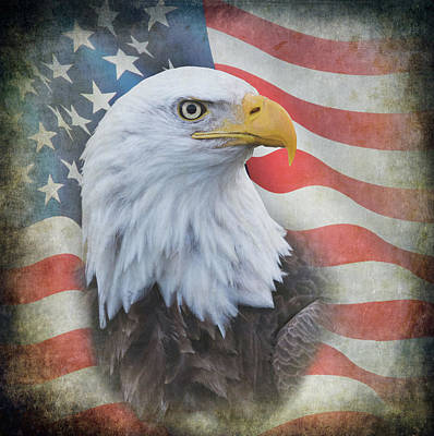 Poster featuring the photograph Bald Eagle With American Flag by Angie Vogel
