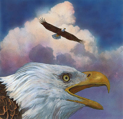 Poster featuring the painting Bald Eagles by John Dyess