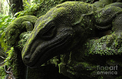 Bali Indonesia Lizard Sculpture Poster by Bob Christopher
