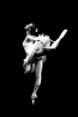 Ballet Dance Poster