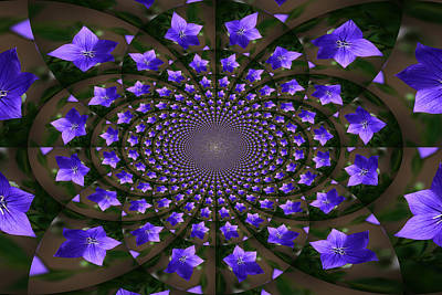 Balloon Flower Kaleidoscope Poster