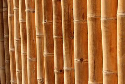 Bamboo 5 Poster