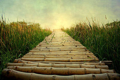 Bamboo Path In Grass At Sunrise Poster by Atul Tater