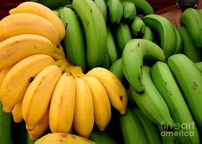 Bananas Poster by Randall Weidner