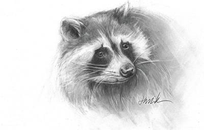 Bandit The Raccoon Poster