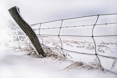 Barbed Wire And Hoar Frost Poster by Dan Jurak