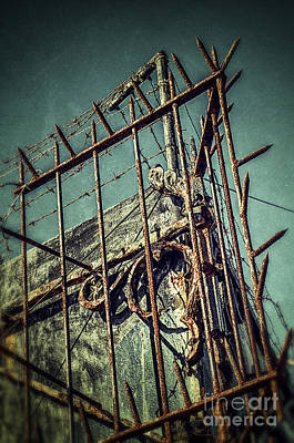 Barbed Wire On Wall Poster by Carlos Caetano
