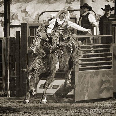 Bareback Riding At The Senior Pro Rodeo Poster by Priscilla Burgers