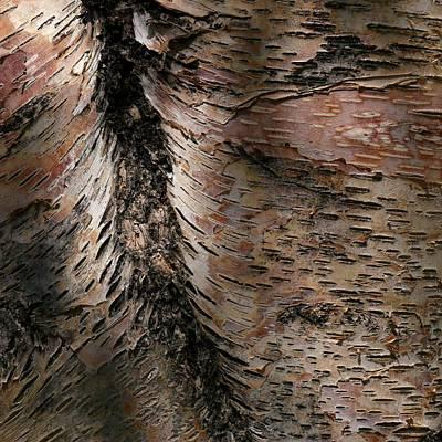 Bark At Woodstream Village Poster