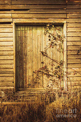 Barn Doors And Hanging Vines Poster by Jorgo Photography - Wall Art Gallery