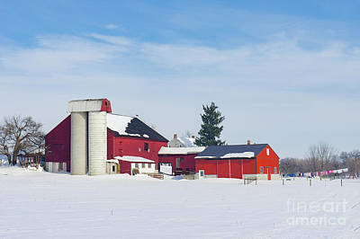 Barn In Snow Covered Meadow Poster