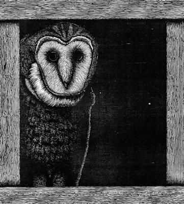 Barn Owl Poster by Wayne Paulin