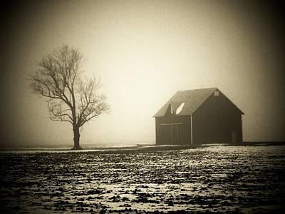 Barn Tree  Fog Poster
