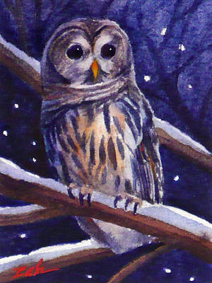 Barred Owl And Starry Sky Poster by Janet  Zeh