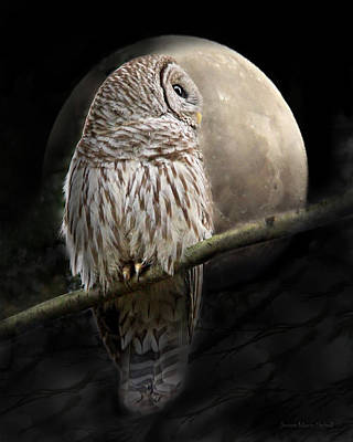 Barred Owl Moon Glow Poster