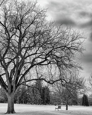 Winter In Cheesman Park, Denver, Co Empty Trees And Empty Benches Poster