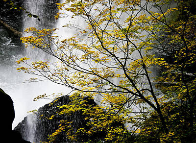 Base Of The Falls. Poster