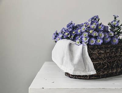 Basket Of Asters Poster by Kim Hojnacki