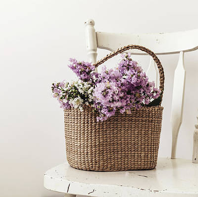 Basket Of Crape Myrtle Poster by Kim Hojnacki