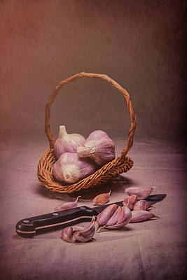Basket Of Garlic Still Life Poster