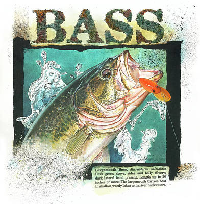 Poster featuring the painting Bass by John Dyess