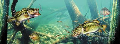 Bass Pond Poster