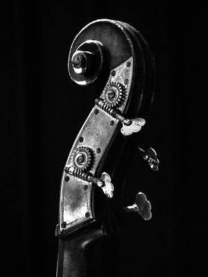 Bass Violin Poster